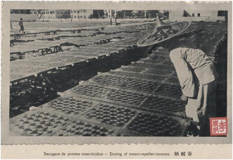 ANUÁRIO 1938 Secagem Pivetes