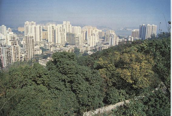 Semana Verde I MACAU, 1988, n.º 9