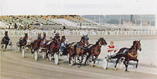 Folheto Turístico MACAU 1984 Cavalos a trote