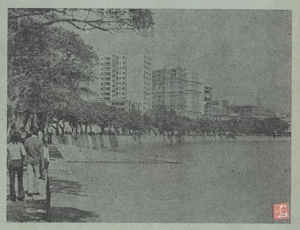 Praia Grande 1973