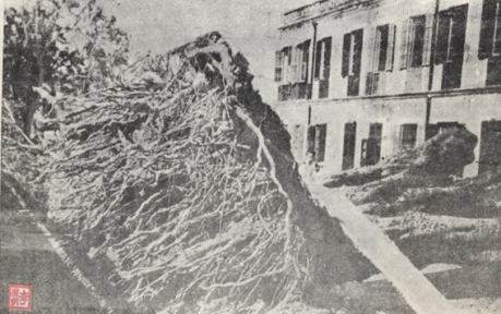 Tufões que Assolaram Macau 8SET1949 LISE I