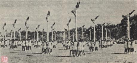 MBI III-57 1955 Festa Militar III