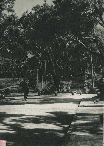 Jardim de Camões AGU c.1950