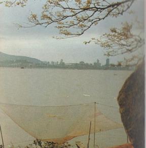 FOLHETO SElos de 1985 I