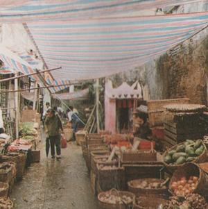 FOLHETO SElos de 1985 V