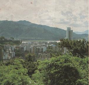 FOLHETO SElos de 1985 VI