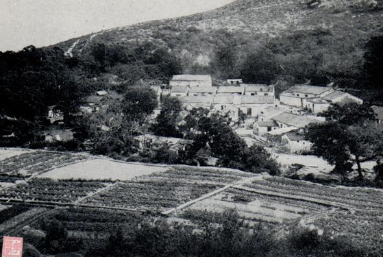 Postal c. 1965 Ilha da Taipa do Miradouro