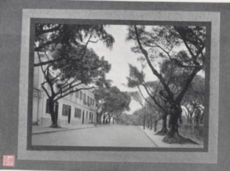 Souvenir de Macau 1910 Estrada da Av Vasco da Gama
