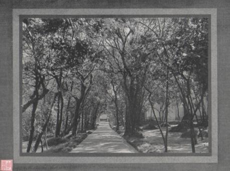 Souvenir de Macau 1910 Praça de Camões