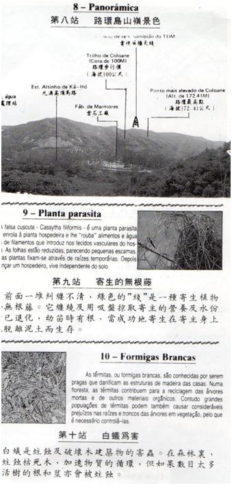 PANFLETO III Rede de Trilhos COLOANE