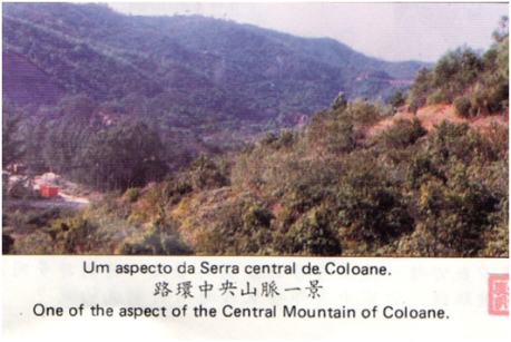 PANFLETO - Serra Central Coloane