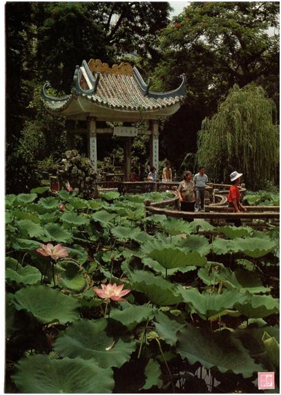 POSTAL - Jardim Lou Lim Ioc 1985