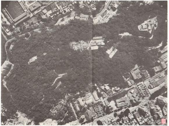 A Arborização em Macau Vista aérea Colina da Guia 1980
