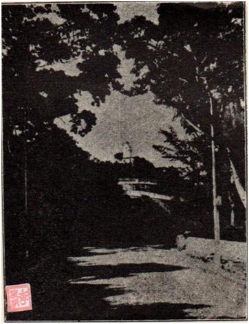 MOSAICO I-6 FEV 1951 SALVE MACAU (II) - Ao José Catela