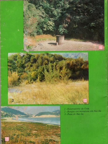 manual-de-identificacao-das-aves-de-macau-contracapa