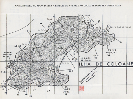 manual-de-identificacao-das-aves-de-macau-mapa-coloane