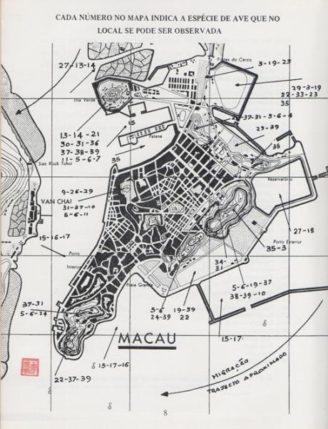 manual-de-identificacao-das-aves-de-macau-mapa-macau