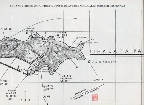 manual-de-identificacao-das-aves-de-macau-mapa-taipa